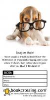 Beagles Rule!