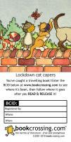 Lockdown cat capers